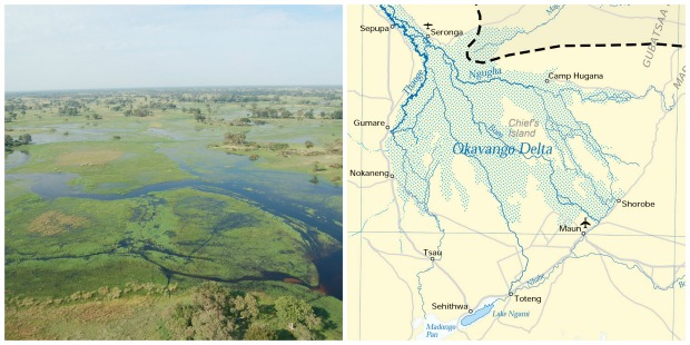 Okavango Delta - collage