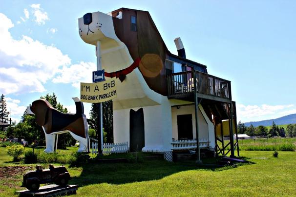 hond gebouw