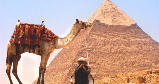 visum egypte aanvragen