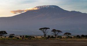 Ambosili National Park