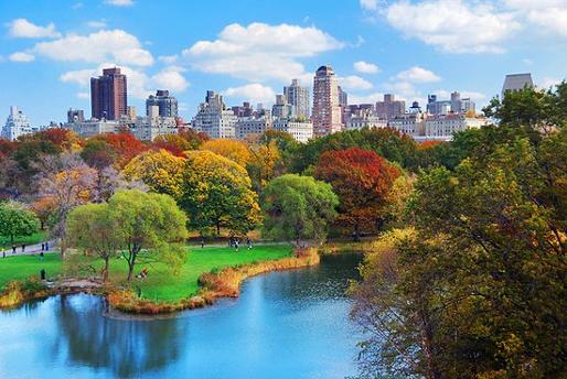 stedentrips najaar New York 2020